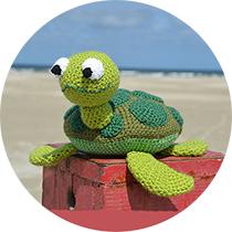 cirkel-turtle