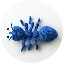 cirkel-ant