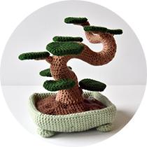 bonsai-cirkel
