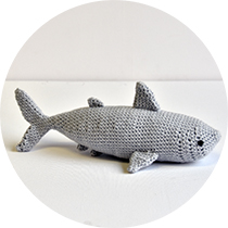 shark-cirkel